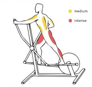 használt ellipszis tréner izomterhelés edzés közben
