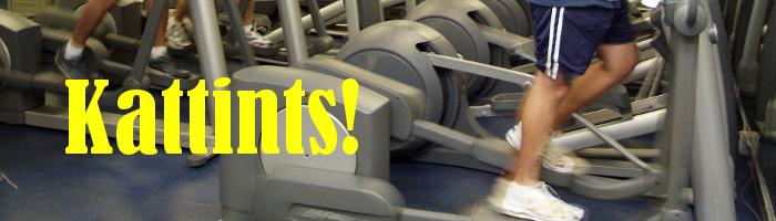 Kattints a Technogym és Life Fitness használt ellipszis tréner (elliptika) kínálat megtekintéséhez!