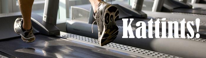 Kattints Technogym és Life Fitness használt futópad kínálatatunk megtekintéséhez