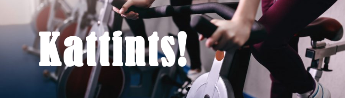 Kattints Technogym és Life Fitness használt szobabicikli (szobakerékpár) kínálatunk megtekintéséhez!
